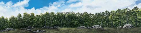 Hudson Allen Studios HA2105 - Rocky Treeline, Eastern U.S.