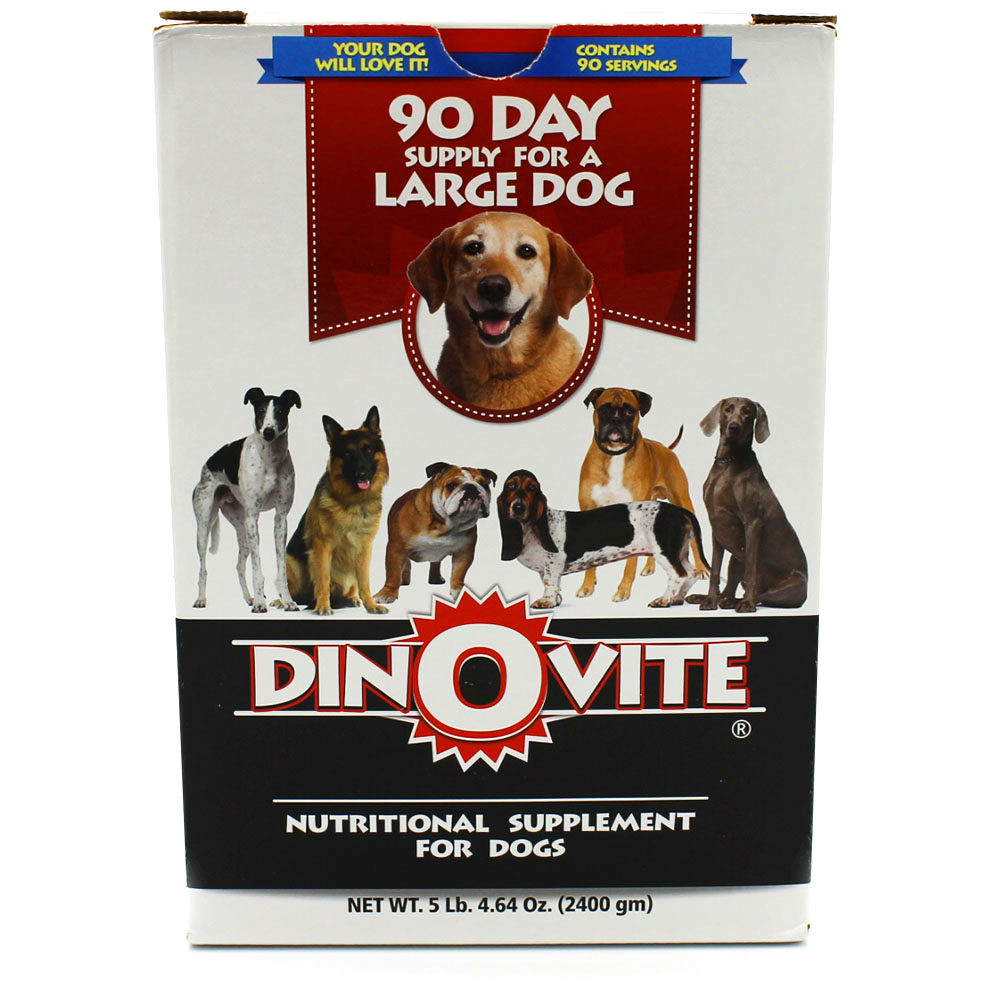 Every Day Food To Bulk Up Dog