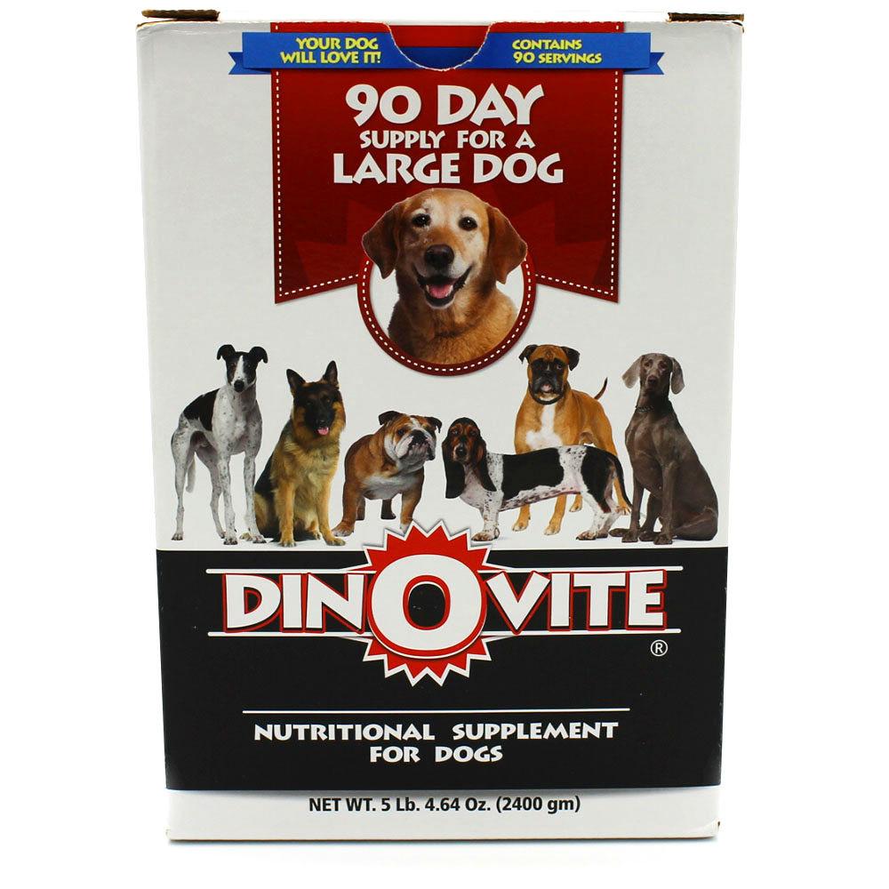Dinovite coupon codes