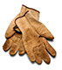 gloves-04295728small.jpg