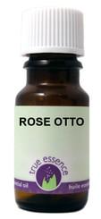 ROSE OTTO (Rosa damascena)