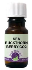 SEA BUCKTHORN BERRY (Hippophae rhamnoides) CO2