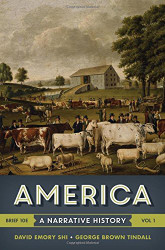 America A Narrative History Brief Edition
