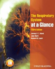 Respiratory System At A Glance