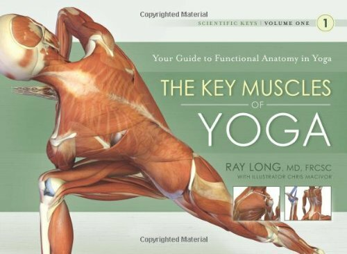Key Muscles Of Yoga Volume 1