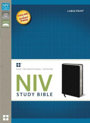 NIV Study Bible Large Print Bonded Leather Black Red Letter Edition