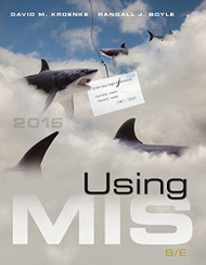 Using Mis ( Management Information Systems)