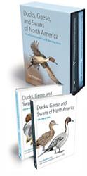 Ducks Geese And Swans Of North America by Guy Baldassarre