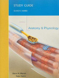 Anatomy And Physiology Study Guide
