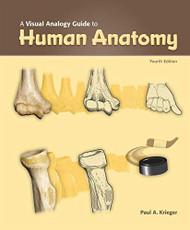 Visual Analogy Guide To Human Anatomy