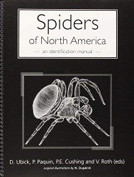 Spiders Of North America