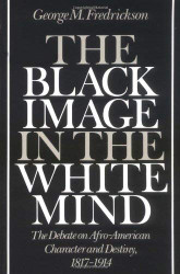 Black Image In The White Mind