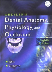 Wheeler's Dental Anatomy Physiology And Occlusion