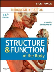 Study Guide For Structure And Function Of The Body 1