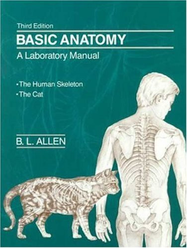 Basic Anatomy
