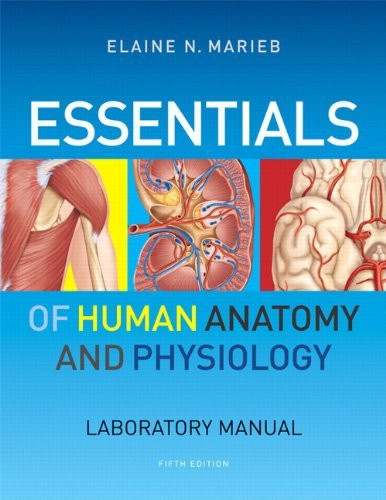human anatomy and physiology lab manual exercise 19 Biol 2404 introduction to anatomy & physiology lab manual, ziser, 20181 1   19 experiment: hematology, heart sounds & blood pressure    59 20  while  human models are also used, your core learning will  loosely structured to  begin with a short introduction to the exercise that highlights the activities of the.