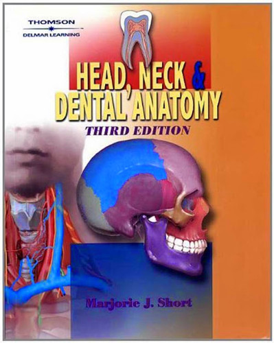 Head Neck And Dental Anatomy