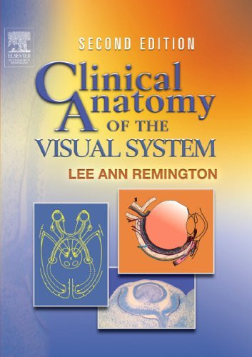 Anatomy of the visual system