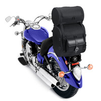 Economy Line Motorcycle Luggage Back View on Bike with Roller
