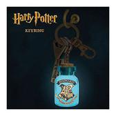 Harry Potter - Themed Light Up Key Ring Paladone 705916