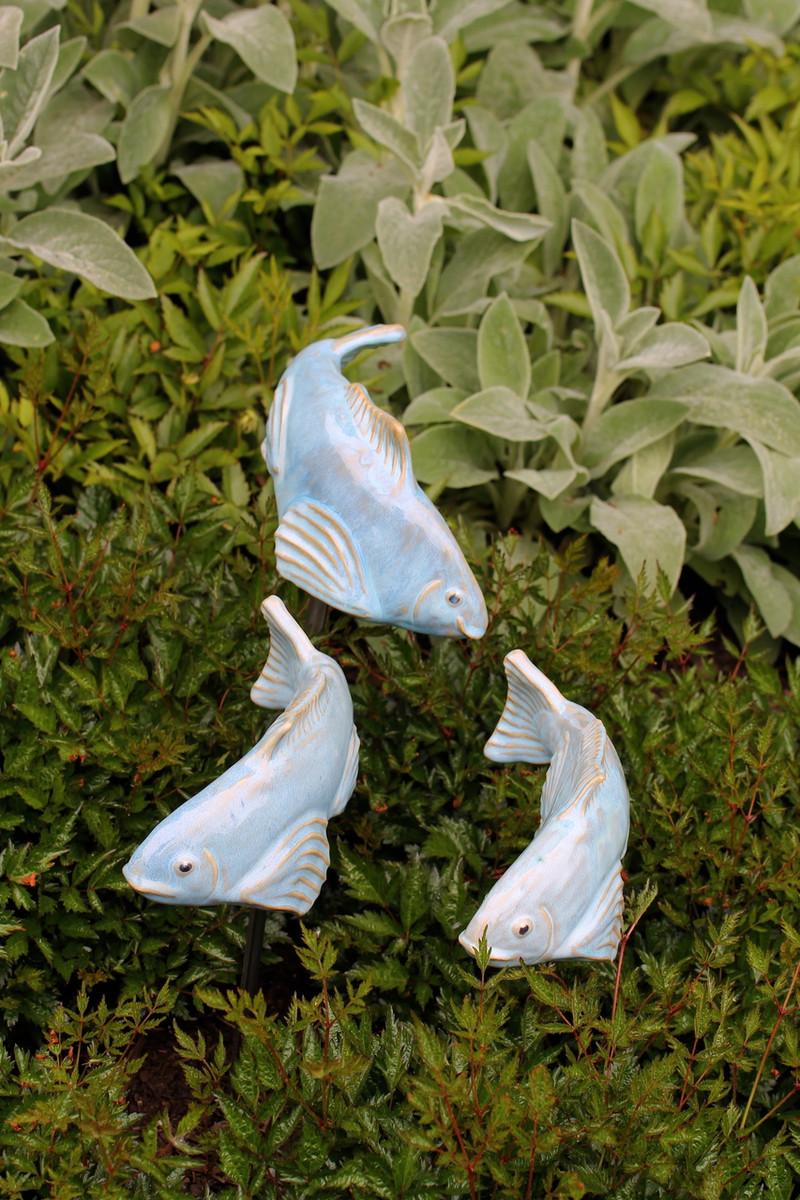 Small koi sky blue fish in the garden llc for Garden fish