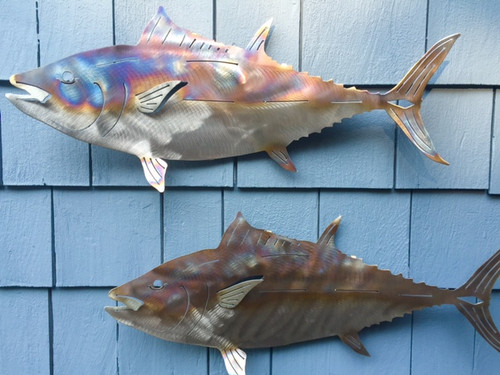 This image shows how direct lighting ( top) makes the fish look way better than the shaded fish (below).