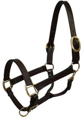 Cobb size leather halter with brass hardware. Comes with double bluckles on crown, adjustable nose and throat latch.
