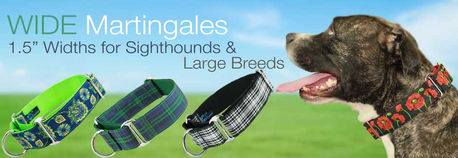 Wide martingales for greyhounds and pit bulls