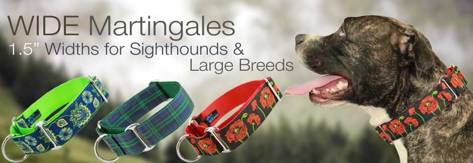 Wide martingale Collars for Greyhounds and Large Breeds
