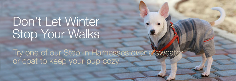winter step in dog harness