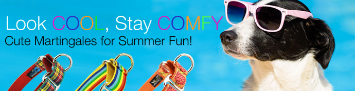 summer martingale collars for dogs