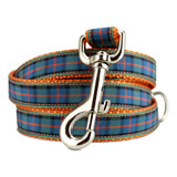 Plaid Dog Leash, Flower of Scotland Tartan, 4', 5', 6' Long, D-ring, Nylon