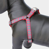 Scottish Plaid Step In Harness, Royal Stewart Tartan, Choke-Free, Adjustable, Red Step in Style