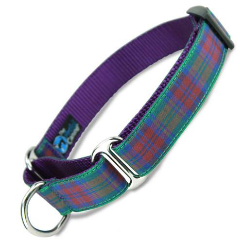Plaid Martingale dog Collar, Lindsay Tartan, Limited Slip, Safety Collar
