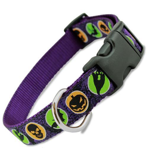 Halloween Dog Collar, Purple