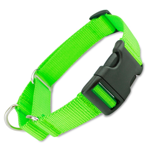 martingale dog collar with buckle limited slip collar
