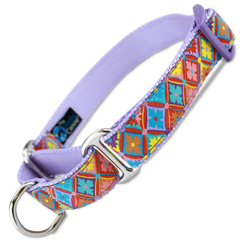 Spring Kaleidoscope Martingale Collar, Spring Fashion dog collar, Easter dog collar