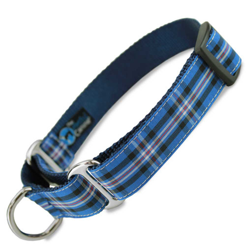 Plaid Dog Collar, Rangers Tartan