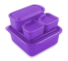 Goodbyn Portions On-the-Go - Purple