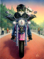BKG44311 Blank Note Card - 'Touring Tabby' Motorcycle Cats