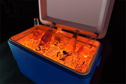 Brightz, Ltd. Orange Cooler Brightz LED Lights Cooler Accessory