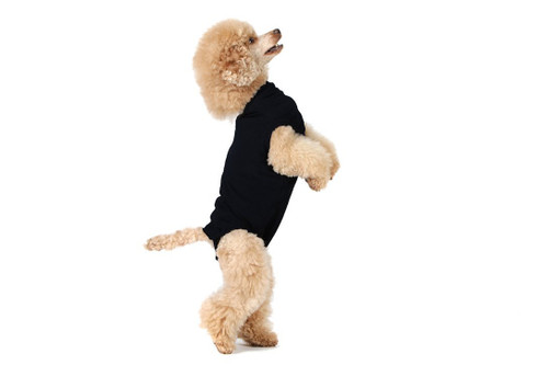 Suitical Recovery Suit for Dogs - Black - size X-Small
