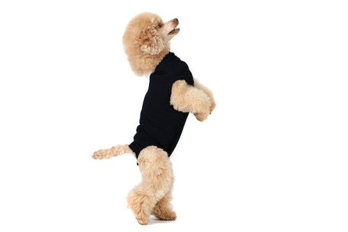Suitical Recovery Suit for Dogs - Black - size XX-Small