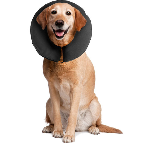 ZenPet Pro Collar Comfy Pet E-Collar For Dogs X-Large