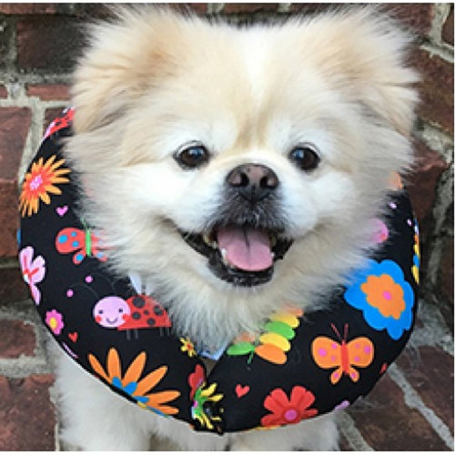 """Puppy Bumpers Puppy Bumper No Way Out 10 to 13"""""""