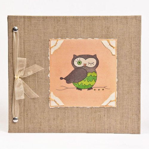 Baby Book - Baby Memory Book - Neutral, Unisex, Owl, Baby Album - Owl Baby Memory Book - Hugs and Kisses XO OWL Baby Memory Book