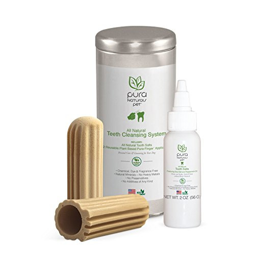 ALL NATURAL TEETH CLEANSING SYSTEM