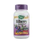 Nature's Way BiLberry Standardized (90 Vcaps)