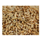 Grains Rye Berries (1x25LB )