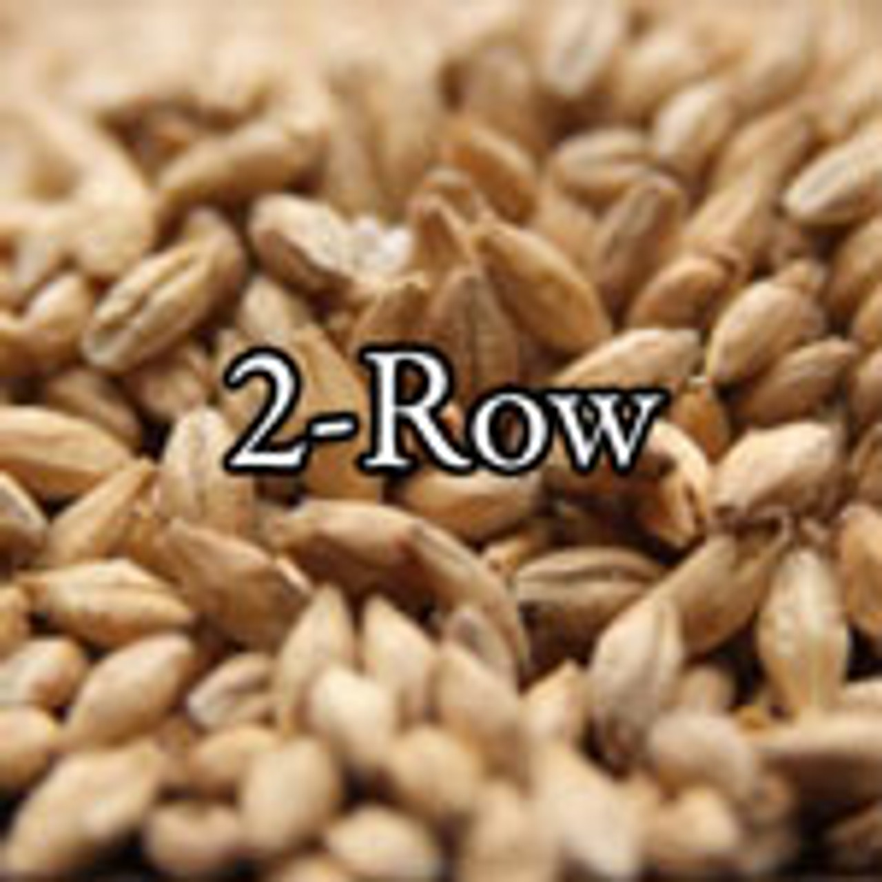 2 Row Malt - BREWinternational